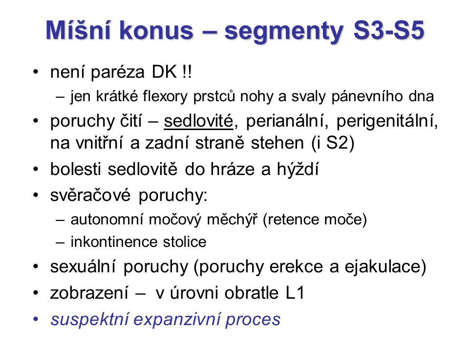 Míšní konus – segmenty S3-S5