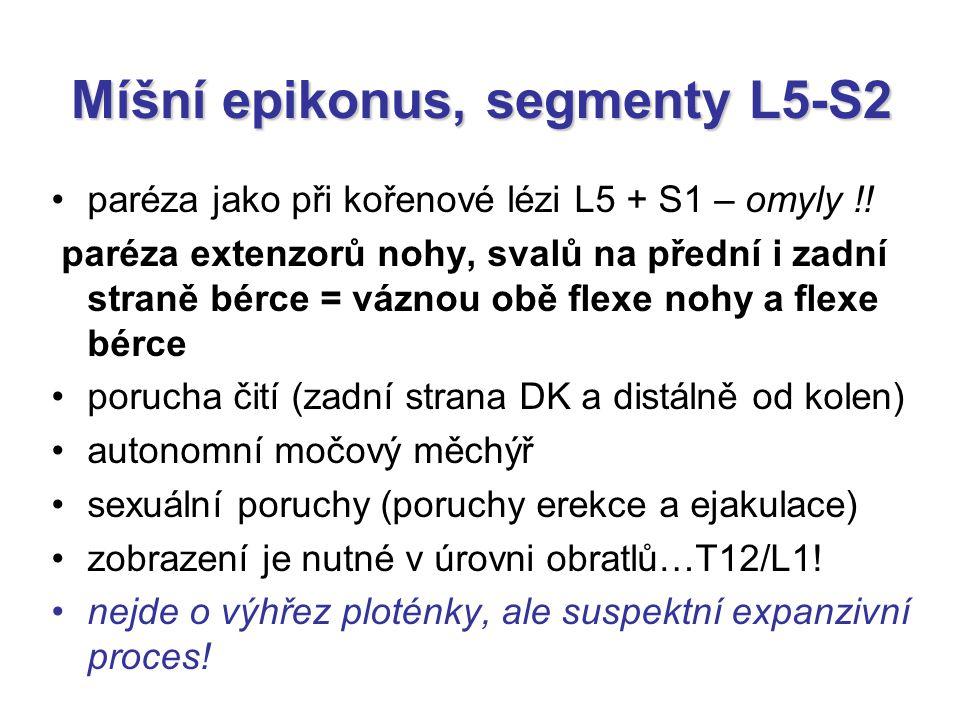 Míšní epikonus, segmenty L5-S2