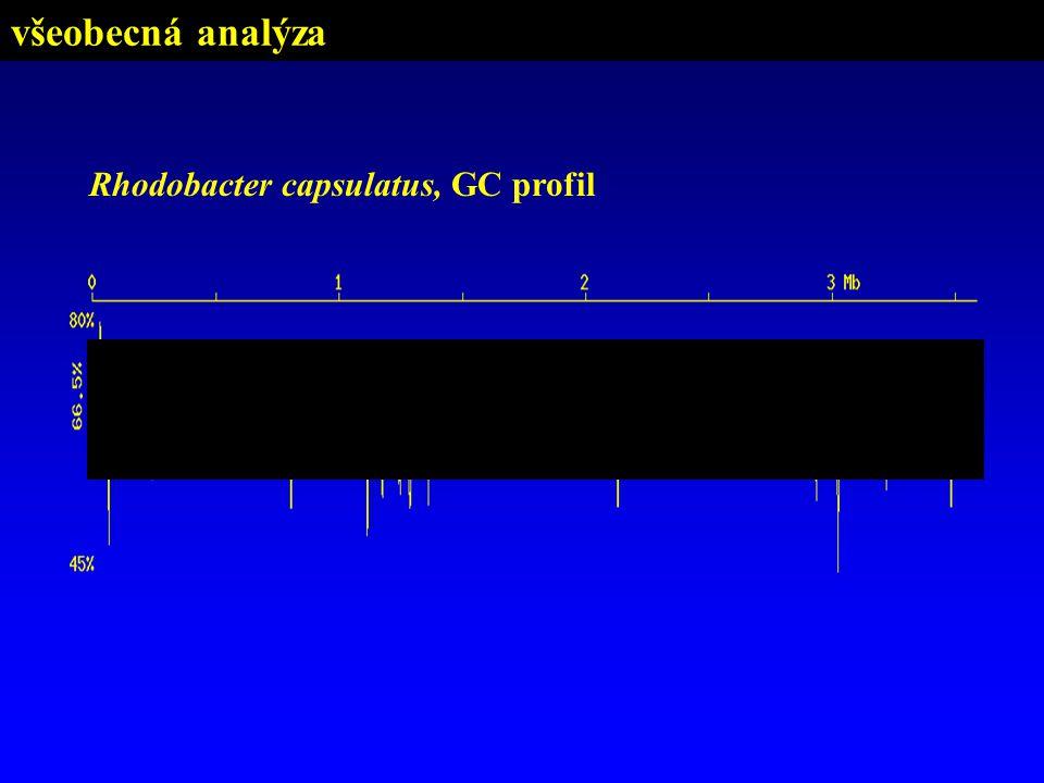 všeobecná analýza Rhodobacter capsulatus, GC profil