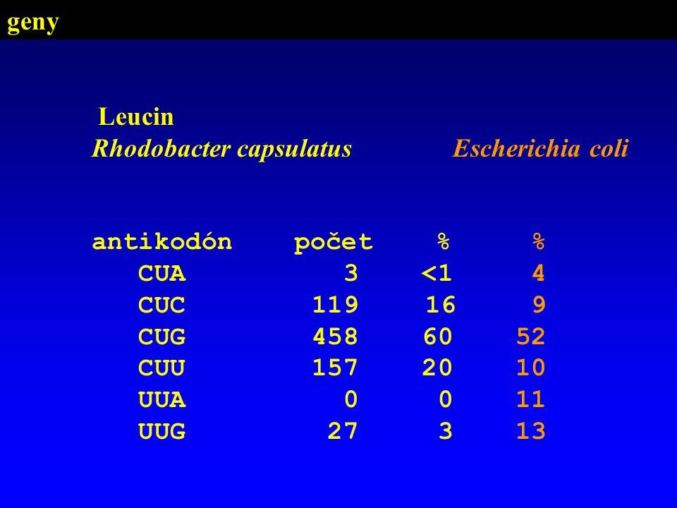 geny Leucin. Rhodobacter capsulatus. antikodón počet % CUA 3 <1. CUC 119 16.