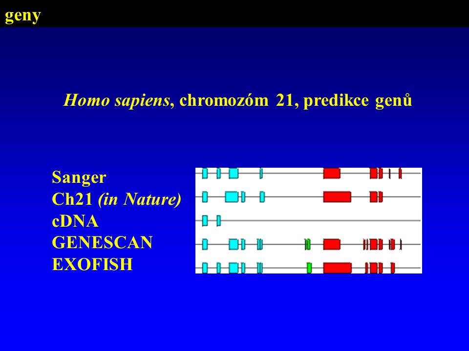 geny Homo sapiens, chromozóm 21, predikce genů Sanger Ch21 (in Nature) cDNA GENESCAN EXOFISH