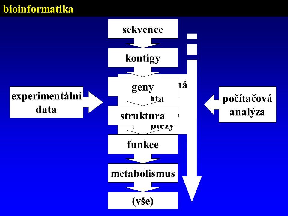 bioinformatika sekvence. geny. kontigy. funkce. metabolismus. (vše) struktura. strukturovaná.