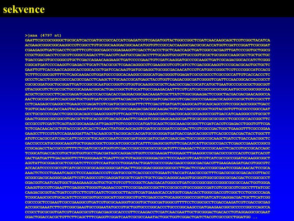 sekvence >jana (4797 nt)