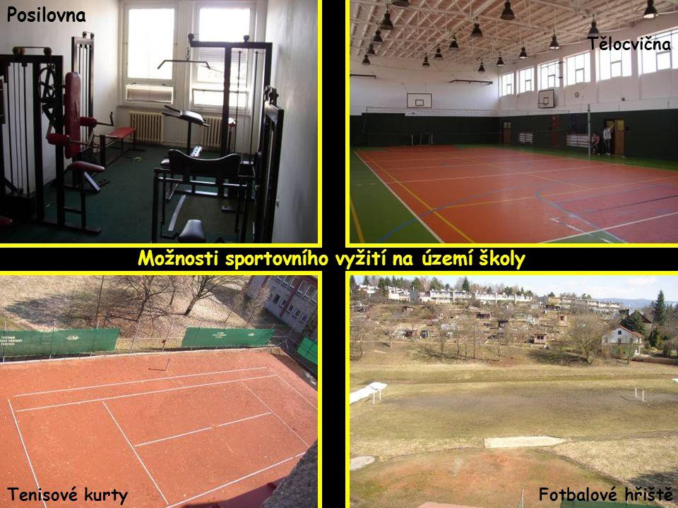 Možnosti sportovního vyžití na území školy