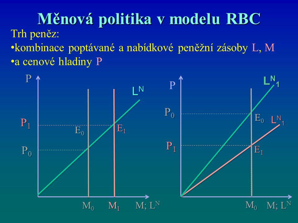 Měnová politika v modelu RBC