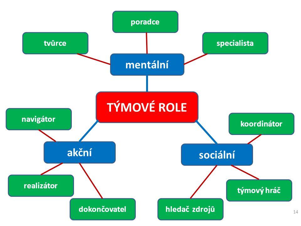 TÝMOVÉ ROLE mentální akční sociální poradce tvůrce specialista