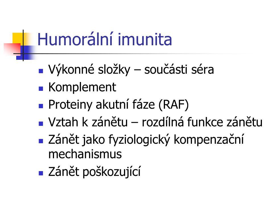 Humorální imunita Výkonné složky – součásti séra Komplement