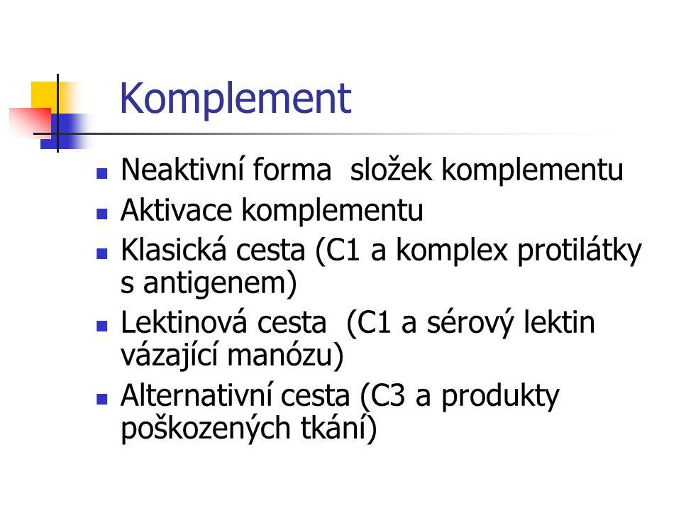 Komplement Neaktivní forma složek komplementu Aktivace komplementu