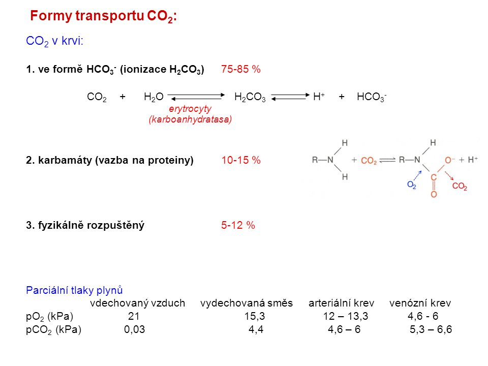 Formy transportu CO2: CO2 v krvi: