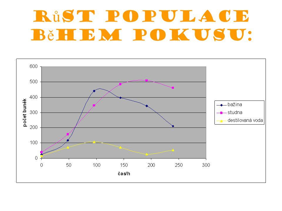 Růst populace během pokusu: