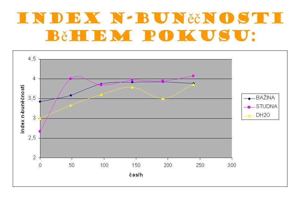 Index n-buněčnosti během pokusu: