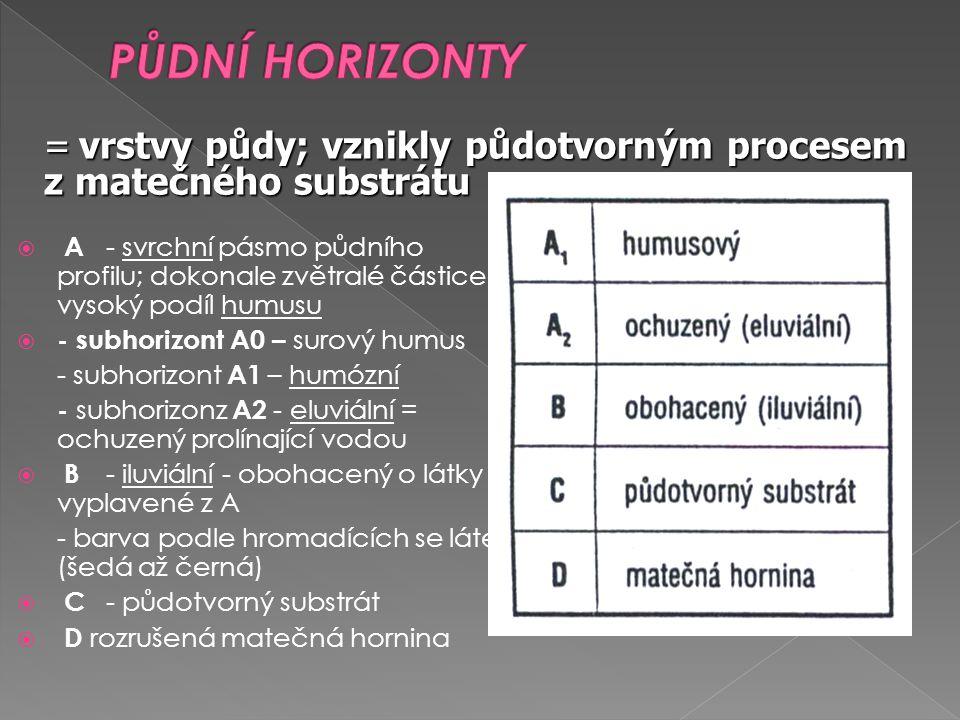 PŮDNÍ HORIZONTY = vrstvy půdy; vznikly půdotvorným procesem z matečného substrátu.