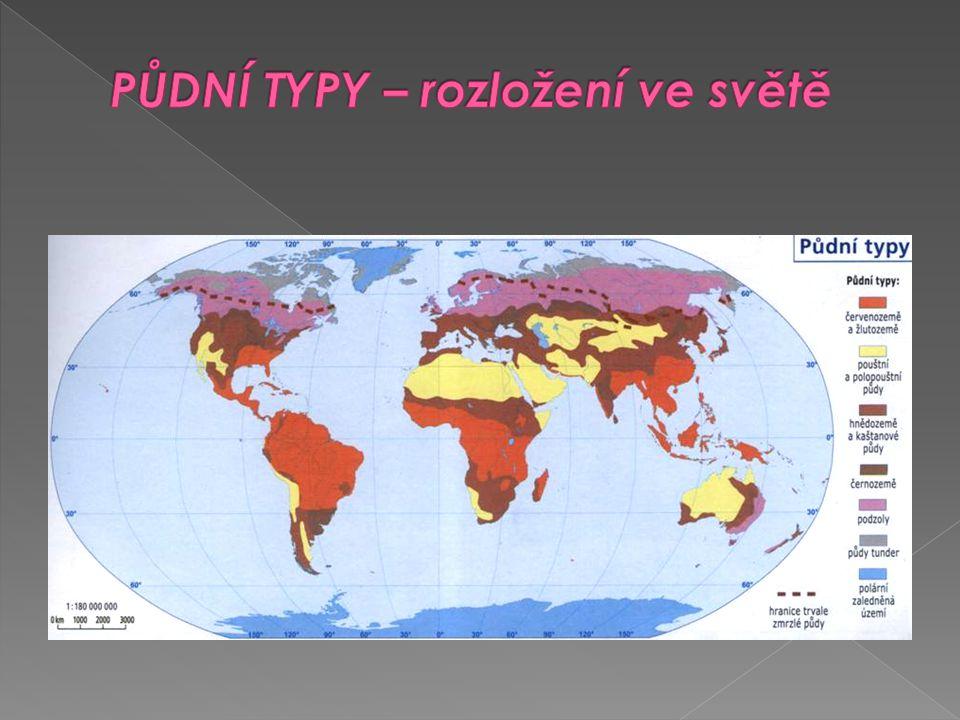 PŮDNÍ TYPY – rozložení ve světě