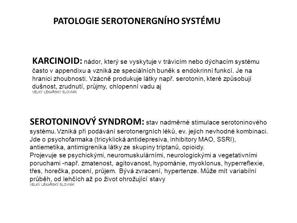 PATOLOGIE SEROTONERGNÍHO SYSTÉMU
