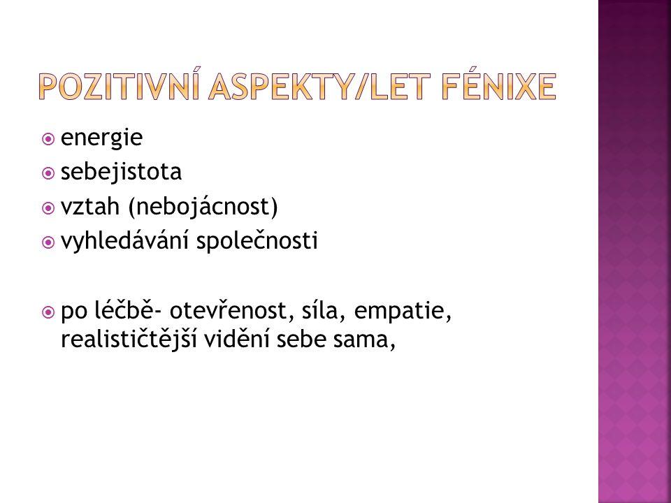 Pozitivní aspekty/let fénixe