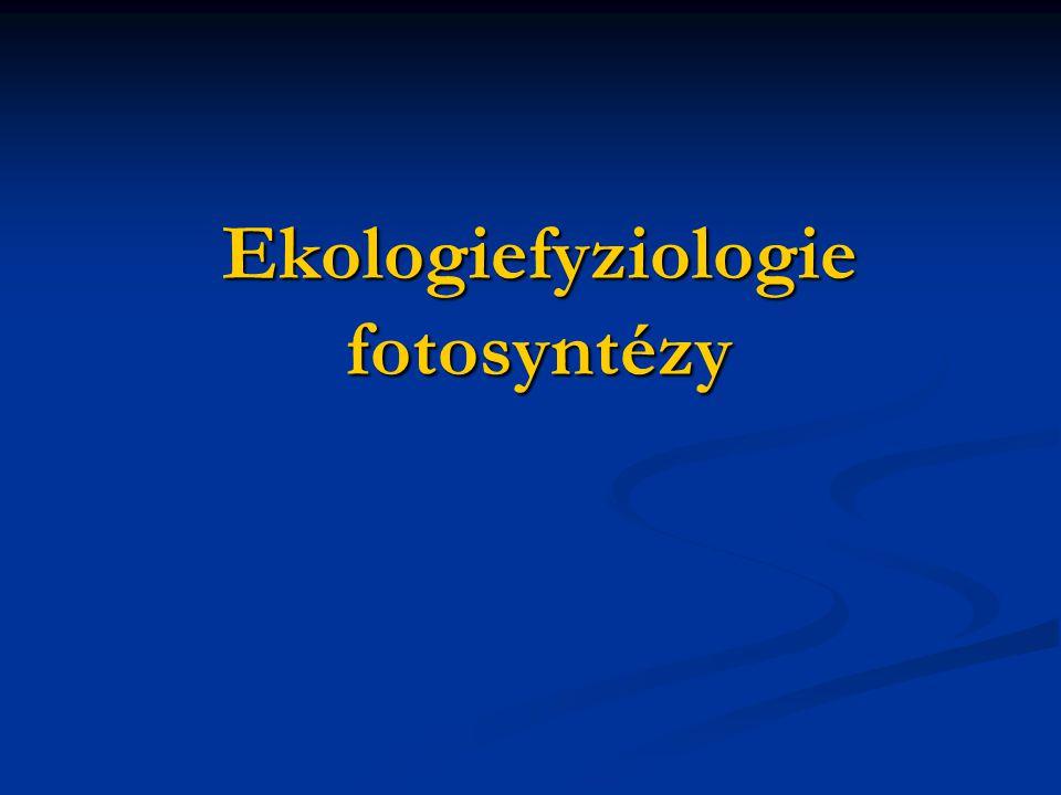 Ekologiefyziologie fotosyntézy