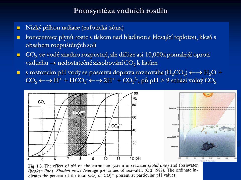 Fotosyntéza vodních rostlin