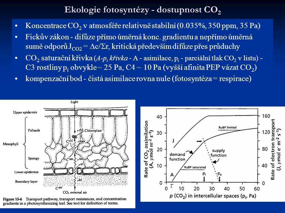 Ekologie fotosyntézy - dostupnost CO2