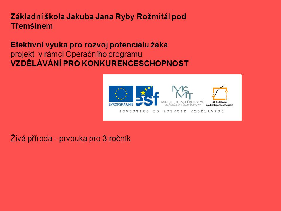 Základní škola Jakuba Jana Ryby Rožmitál pod Třemšínem