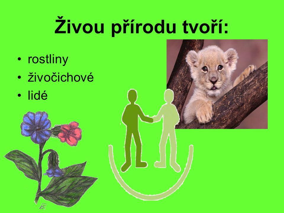 Živou přírodu tvoří: rostliny živočichové lidé