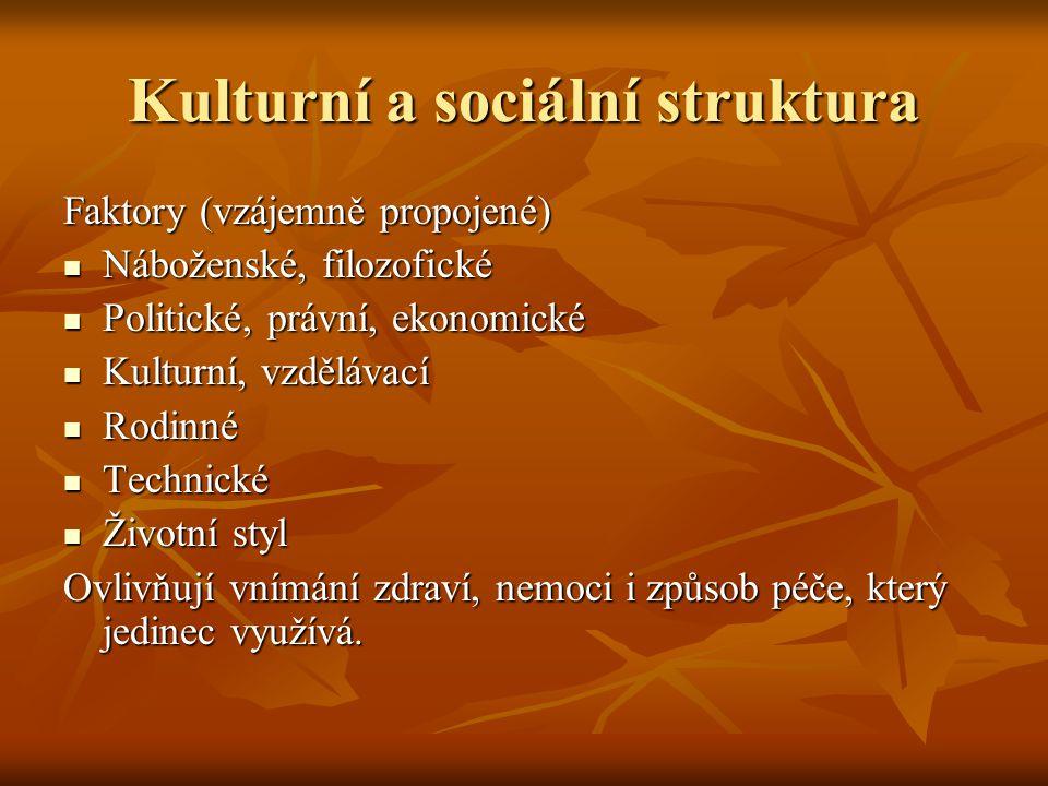 Kulturní a sociální struktura