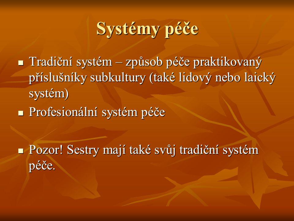 Systémy péče Tradiční systém – způsob péče praktikovaný příslušníky subkultury (také lidový nebo laický systém)