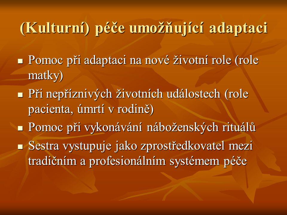 (Kulturní) péče umožňující adaptaci