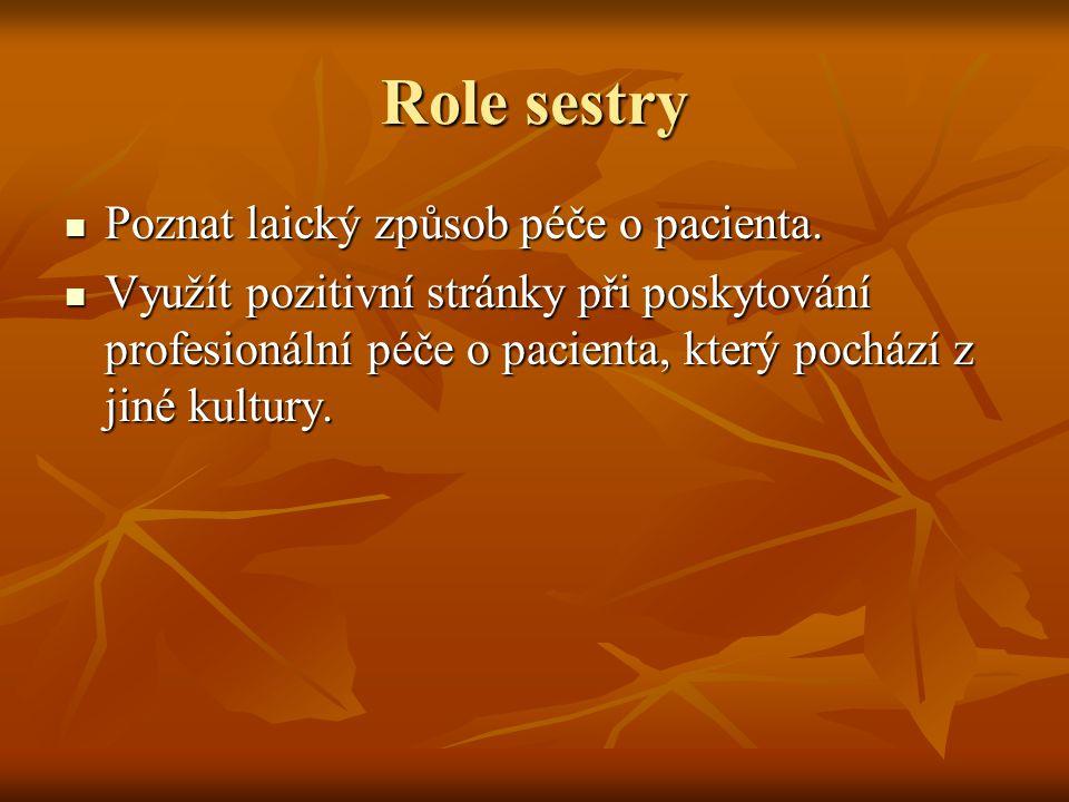 Role sestry Poznat laický způsob péče o pacienta.