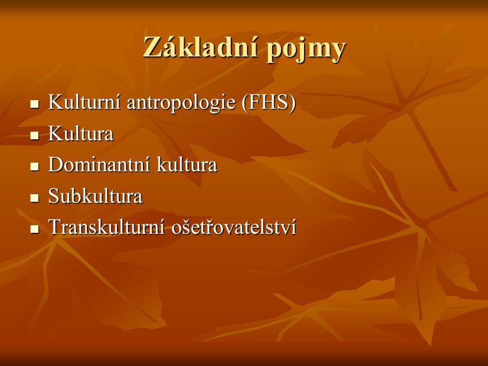 Základní pojmy Kulturní antropologie (FHS) Kultura Dominantní kultura