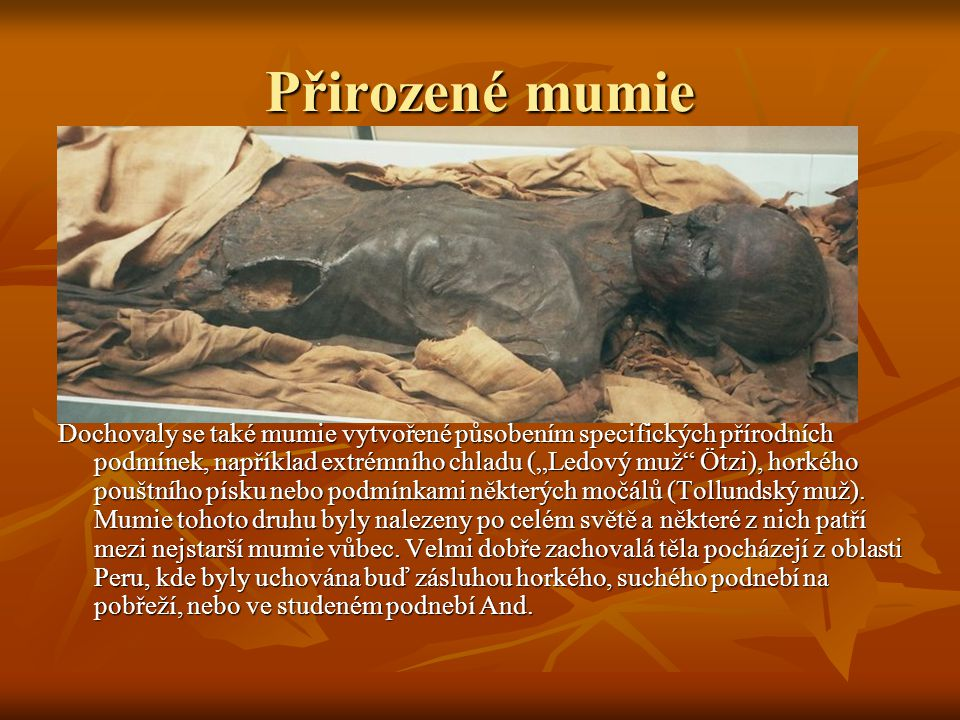 Přirozené mumie