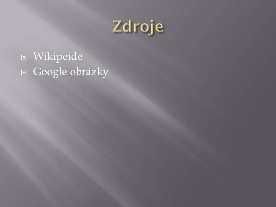 Zdroje Wikipeide Google obrázky