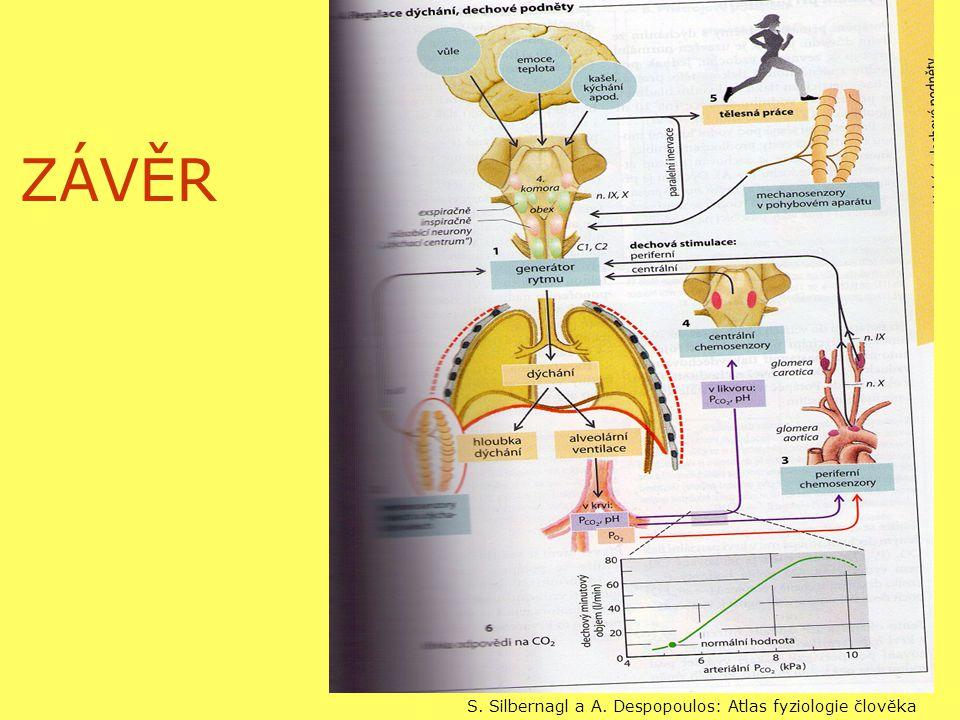 ZÁVĚR S. Silbernagl a A. Despopoulos: Atlas fyziologie člověka