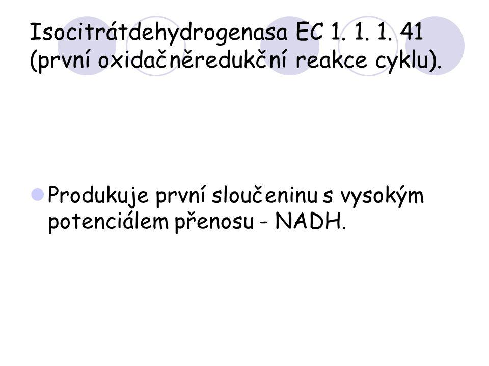 Isocitrátdehydrogenasa EC 1. 1. 1