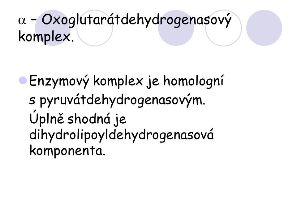 a – Oxoglutarátdehydrogenasový komplex.