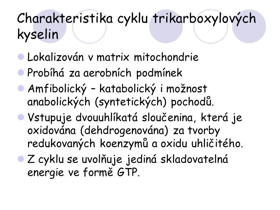 Charakteristika cyklu trikarboxylových kyselin