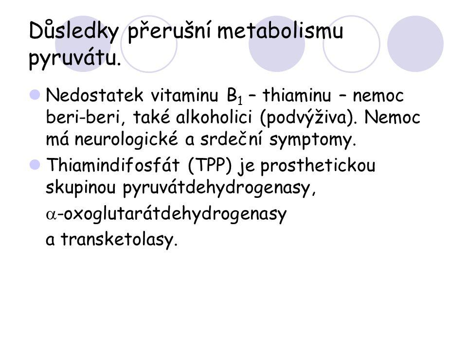 Důsledky přerušní metabolismu pyruvátu.