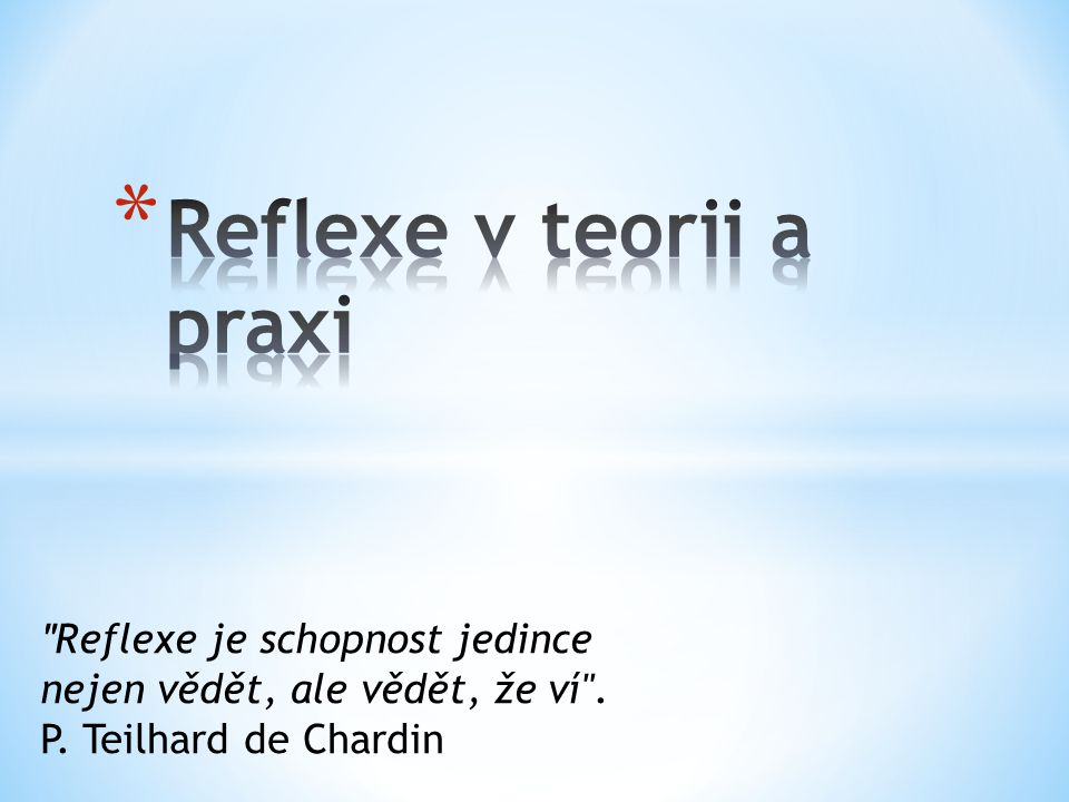 Reflexe v teorii a praxi