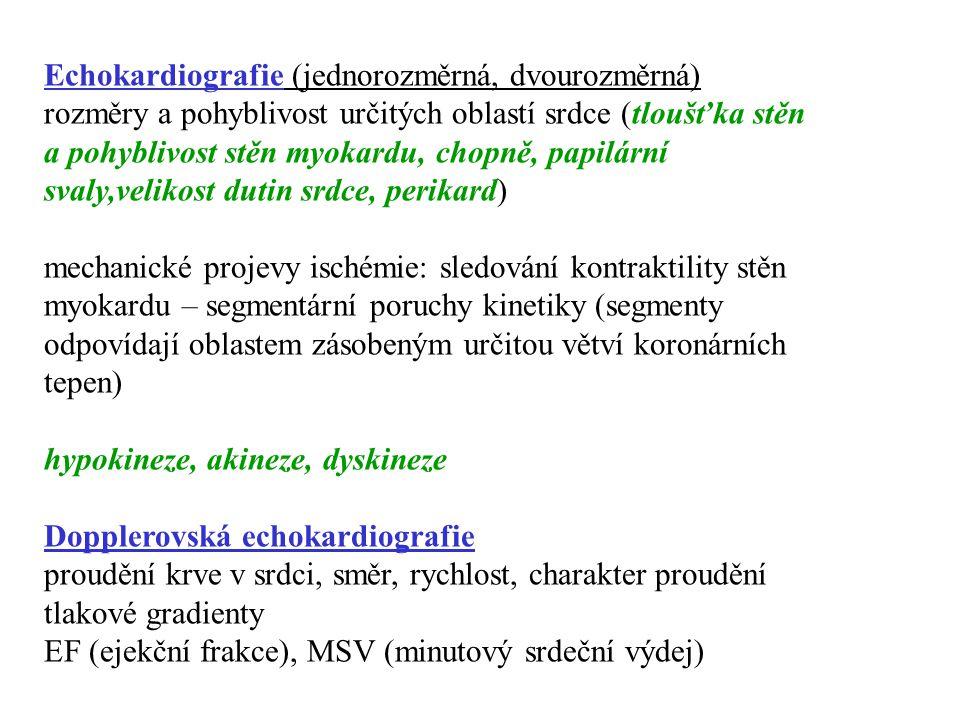 Echokardiografie (jednorozměrná, dvourozměrná)