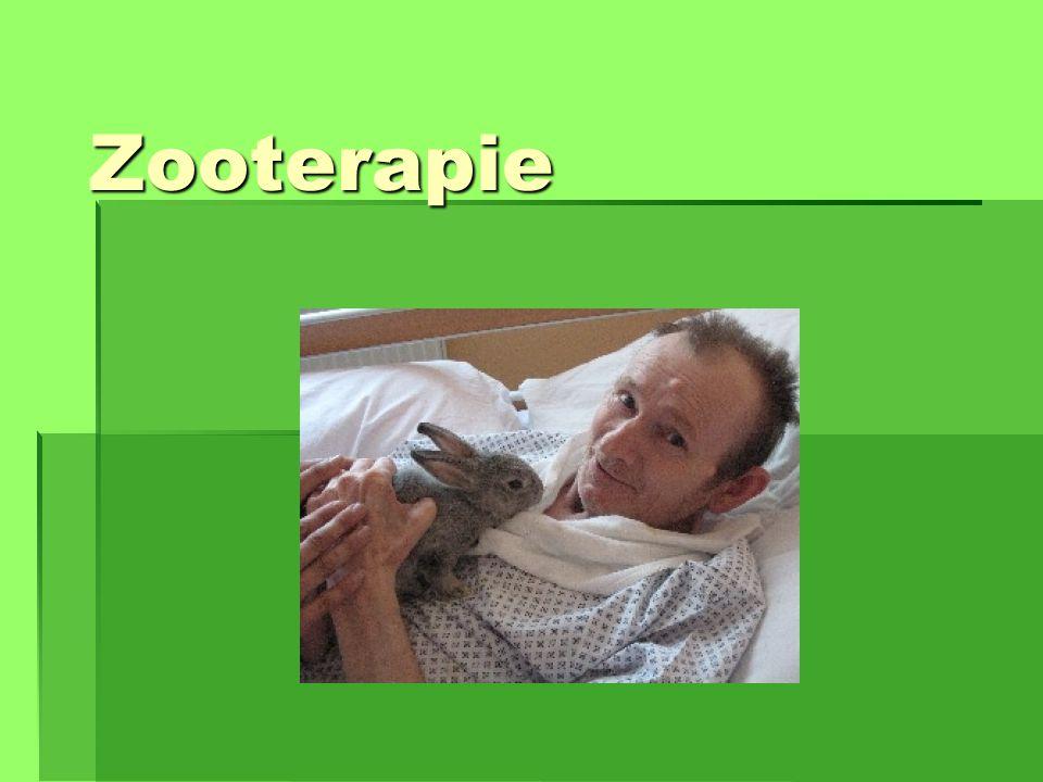 Zooterapie