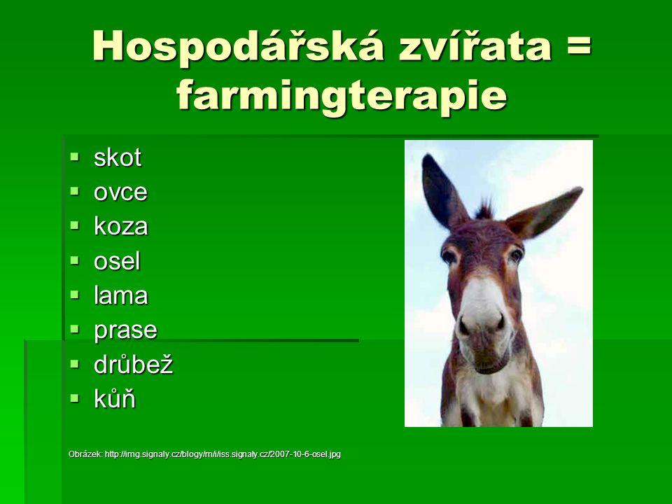Hospodářská zvířata = farmingterapie