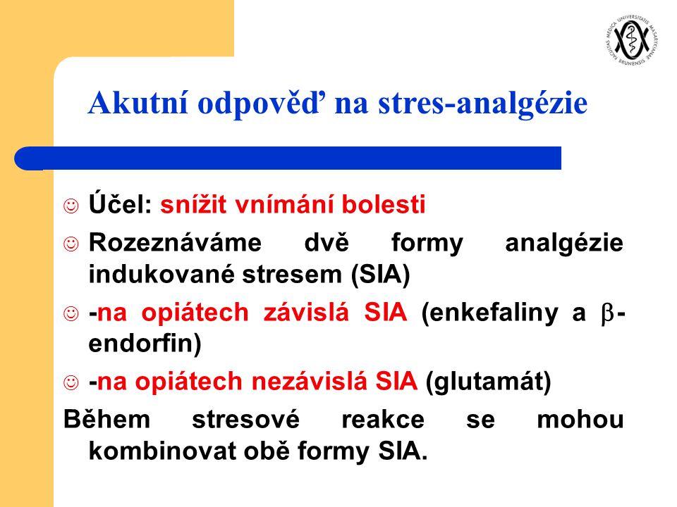 Akutní odpověď na stres-analgézie