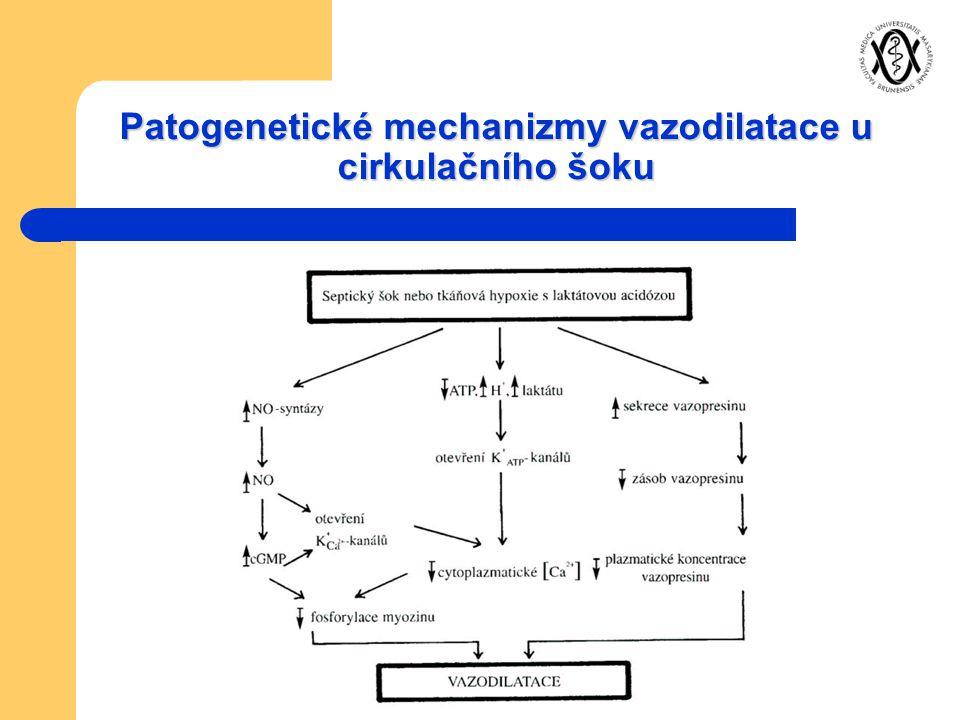 Patogenetické mechanizmy vazodilatace u cirkulačního šoku