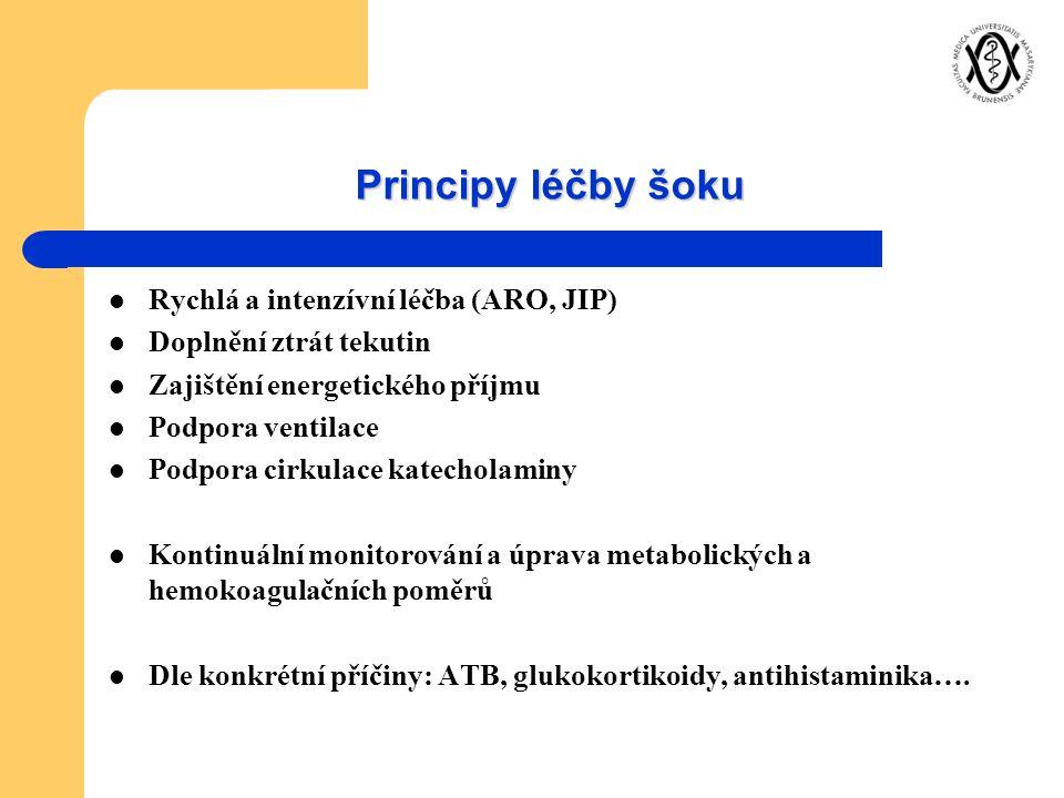 Principy léčby šoku Rychlá a intenzívní léčba (ARO, JIP)