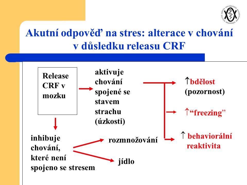 Akutní odpověď na stres: alterace v chování