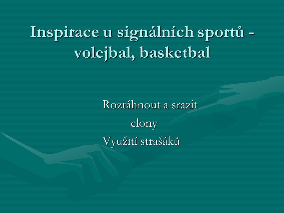 Inspirace u signálních sportů - volejbal, basketbal