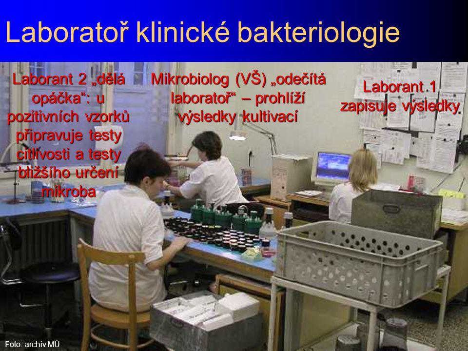 Laboratoř klinické bakteriologie