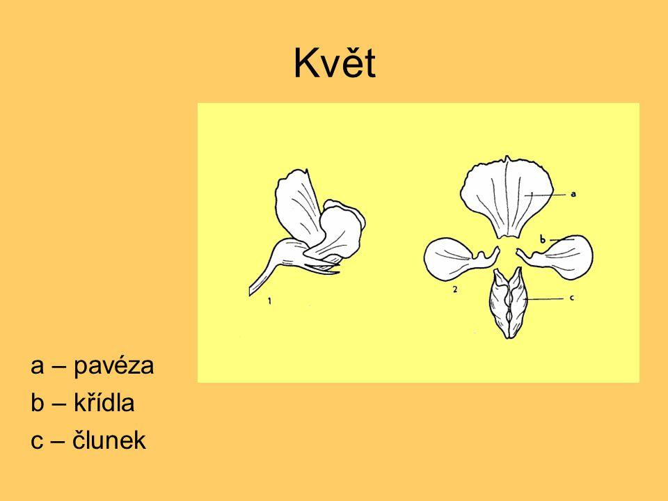 Květ a – pavéza b – křídla c – člunek