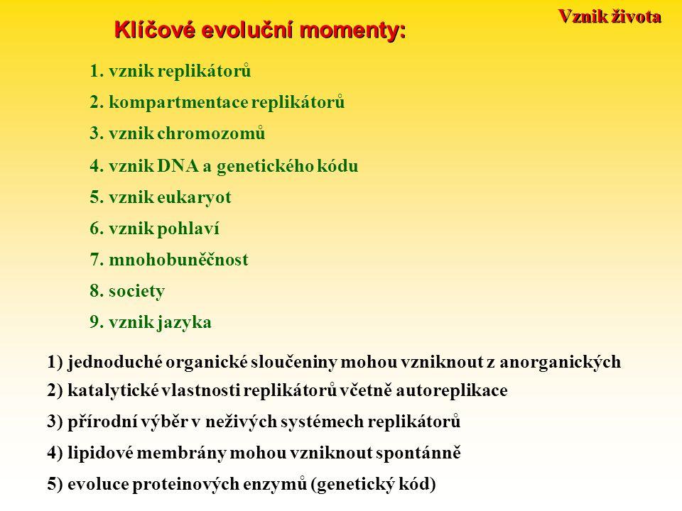 Klíčové evoluční momenty: