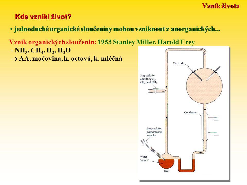 Vznik života Kde vznikl život jednoduché organické sloučeniny mohou vzniknout z anorganických...