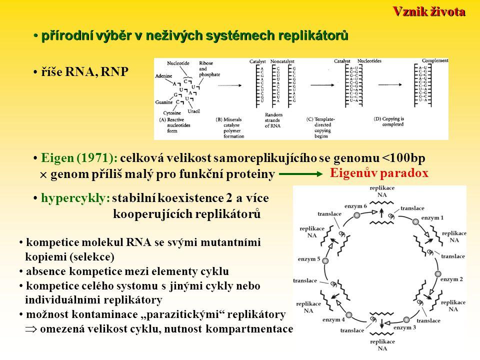 přírodní výběr v neživých systémech replikátorů